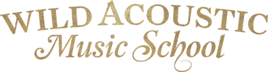Home | Wild Acoustic Music School